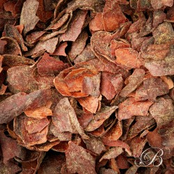 Infusion COCAO orange - spices